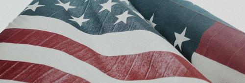 USA Flag Special